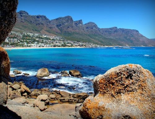 CT withdraws opposition to Maiden's Cove review