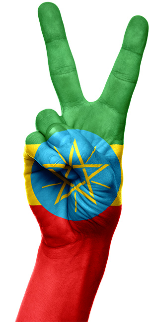 Ethiopia remains the continent's top performer in construction with an increase of more than 12%. Image: Pixabay